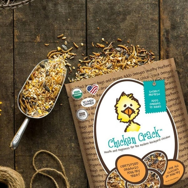 Chicken treats - 2 flavors!