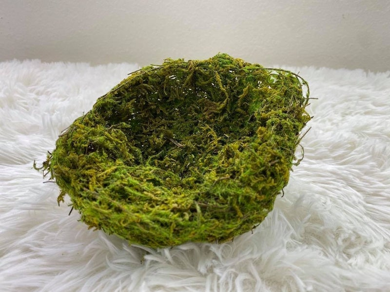Faux green moss and nature nest