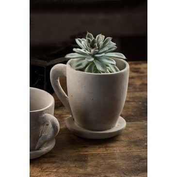 Large Tea Cup Cement Planter