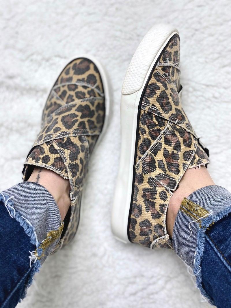 Ivette: Leopard