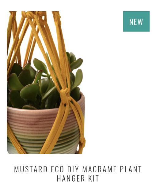 ECO DIY MACRAME PLANT HANGER KIT