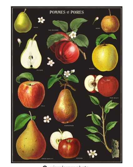 Apple and Pears Wrap