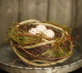 """5.50"""" Grapevine nest with eggs"""