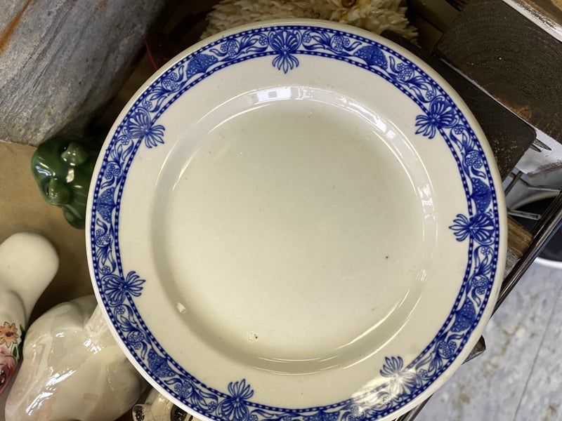 "Vintage Wellsville Belmont plate - 6"""