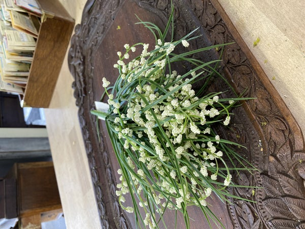 Wild grass and blooms pick white