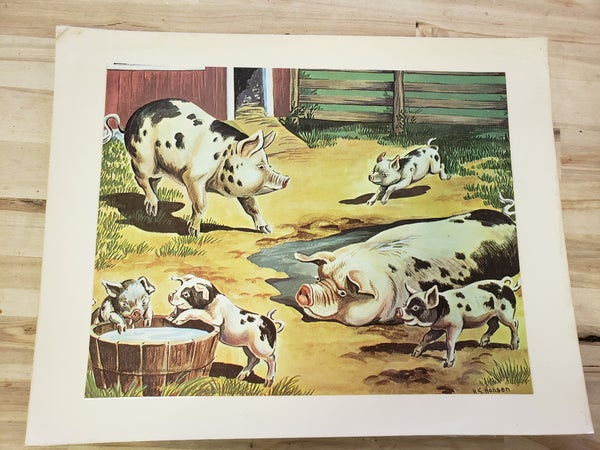 Vintage Animal Picture