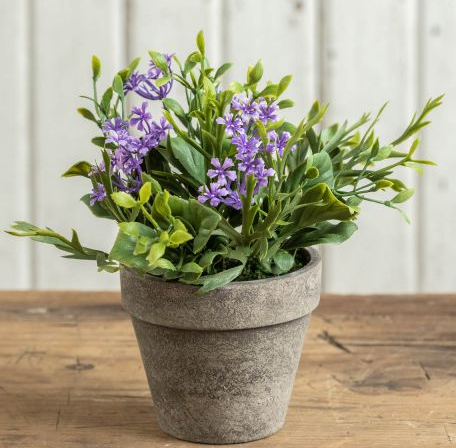 """7"""" Purple potted jasmine, prunella, and musk mallow leaves"""