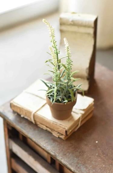 """10"""" Flowering Sage Pot"""
