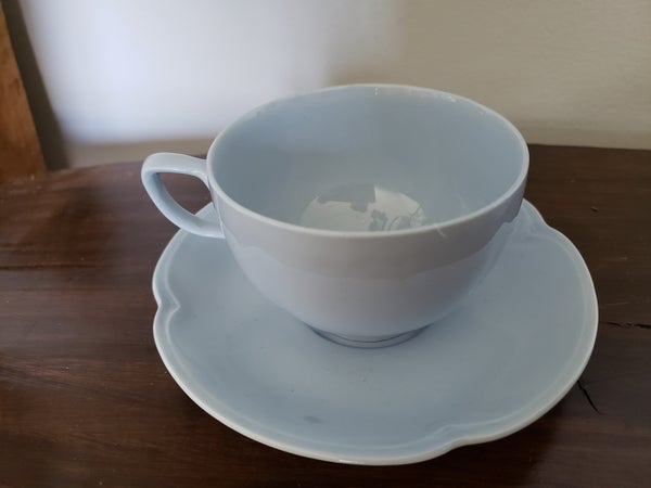 Johnson Brothers-England teacup and saucer