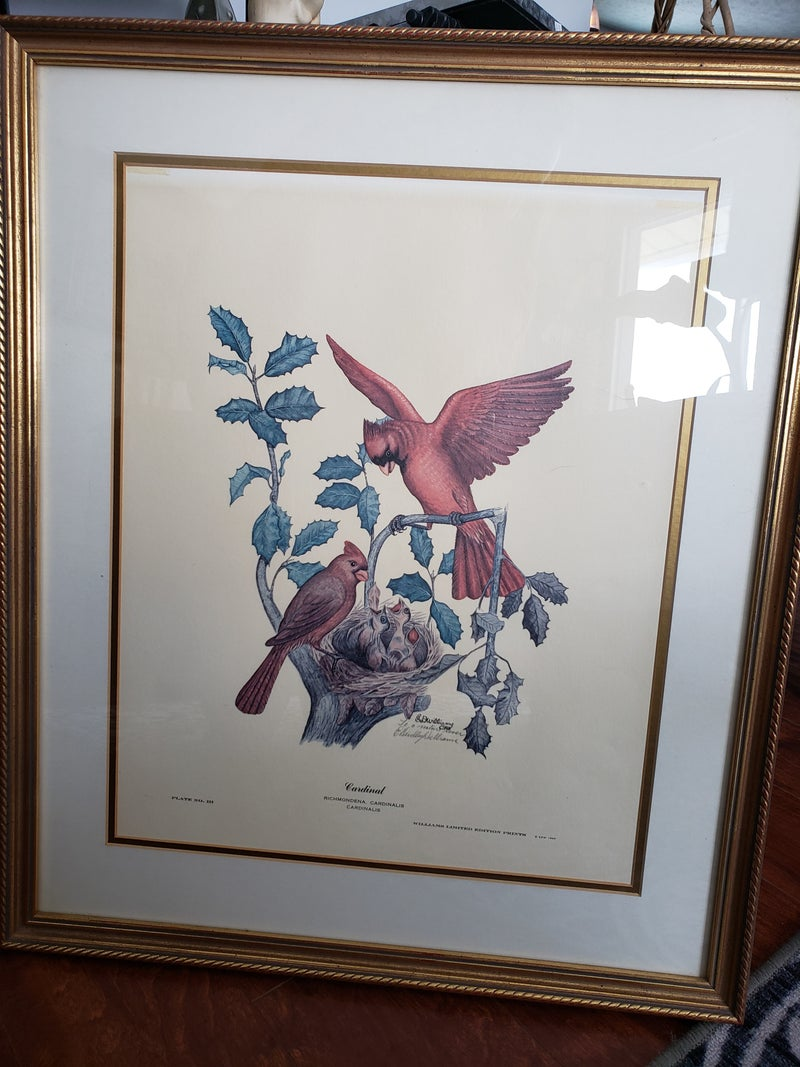 Williamson Limited Edition Print Cardinalsl