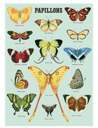 Papillons Wrap