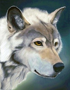 "Full drill - Square Diamonds - Winter Wolf - 16""x20"" (GF-2669)"