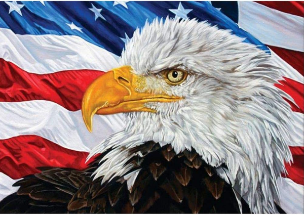 """9/9: NEW Eagle with Flag (Full drill - round diamonds) 9.5""""x11.5"""" (#1083)"""