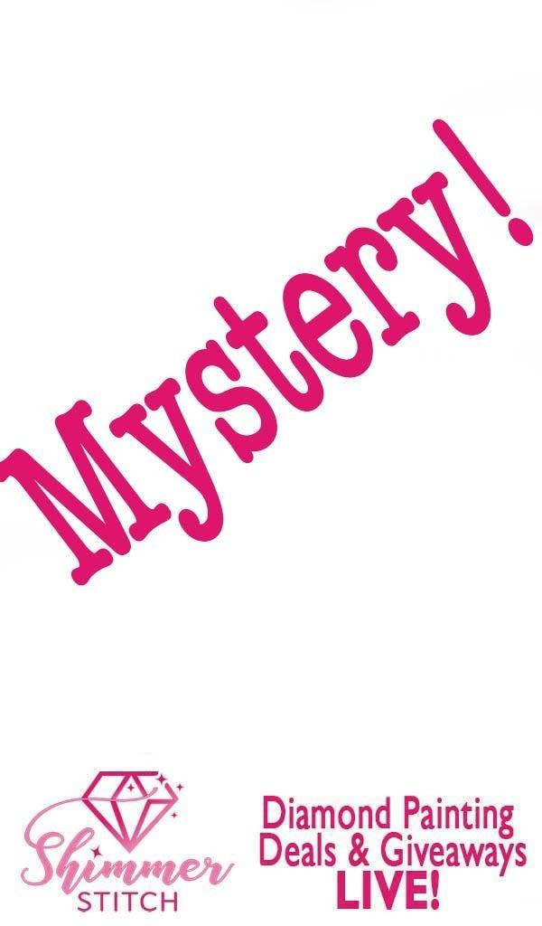 2/23: Mystery Notebook (#241)