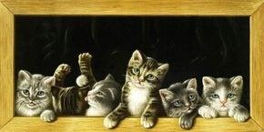 "Full drill - Square Diamonds - Vintage Cats - 20""x40"" (GF-1817)"
