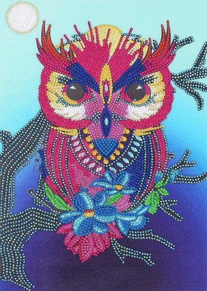 "9/14: Owl (Partial) 9.5""x11.5"" (#381)"