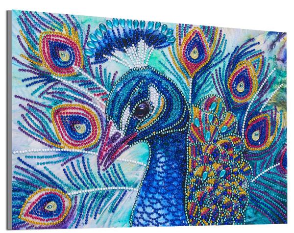 "9/16: Pretty Peacock (Partial) 9.5""x11.5"" (#1696)"