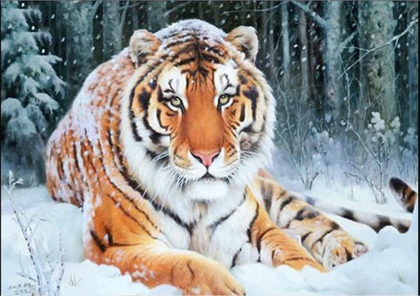 "Tiger (Diamond Heavy Partial) 12""x16"" (#1077)"