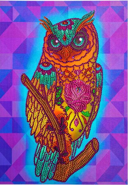 "Geometric Owl (Partial) 9.5""x11.5"" (#1471)"