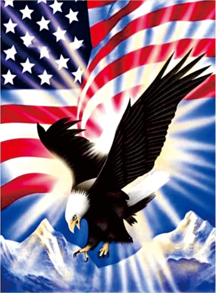 """8/7: Eagle in Front of Flag (Full drill - round diamonds) 12""""x16"""" (#164)"""