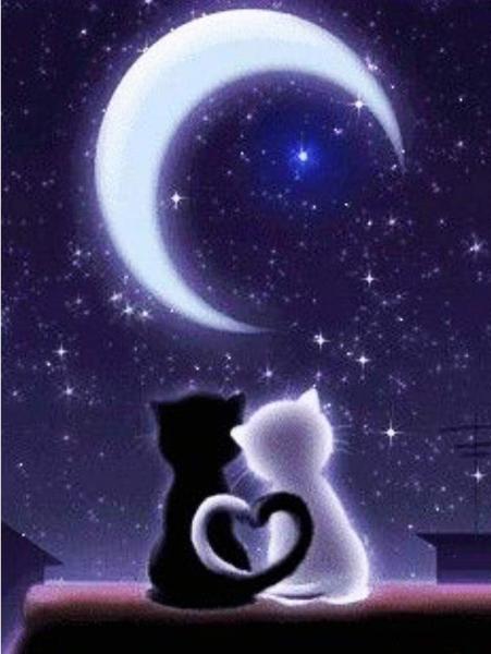 "9/23: Moon Cats (Full drill - round diamonds) 12""x16"" (#1052)"