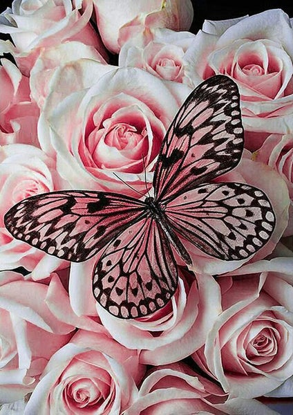 """3/16: Butterfly on Roses (Full drill - round diamonds) 9.5""""x13.5"""" (#1247)"""