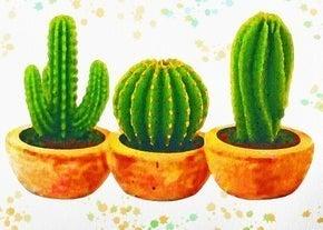"""9/4: Full drill - Square Diamonds - Three Cactus - 16""""x20"""" (GF-2852)"""