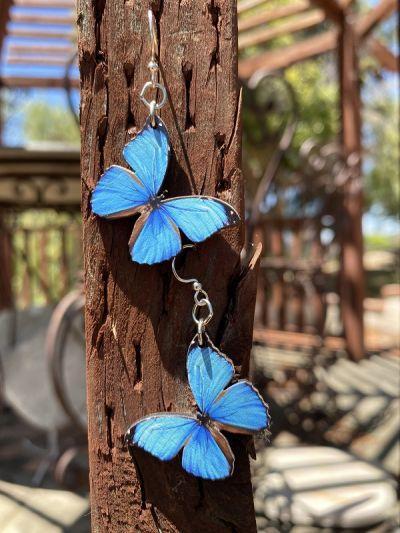 Blue Butterfly Earrings *Final Sale*