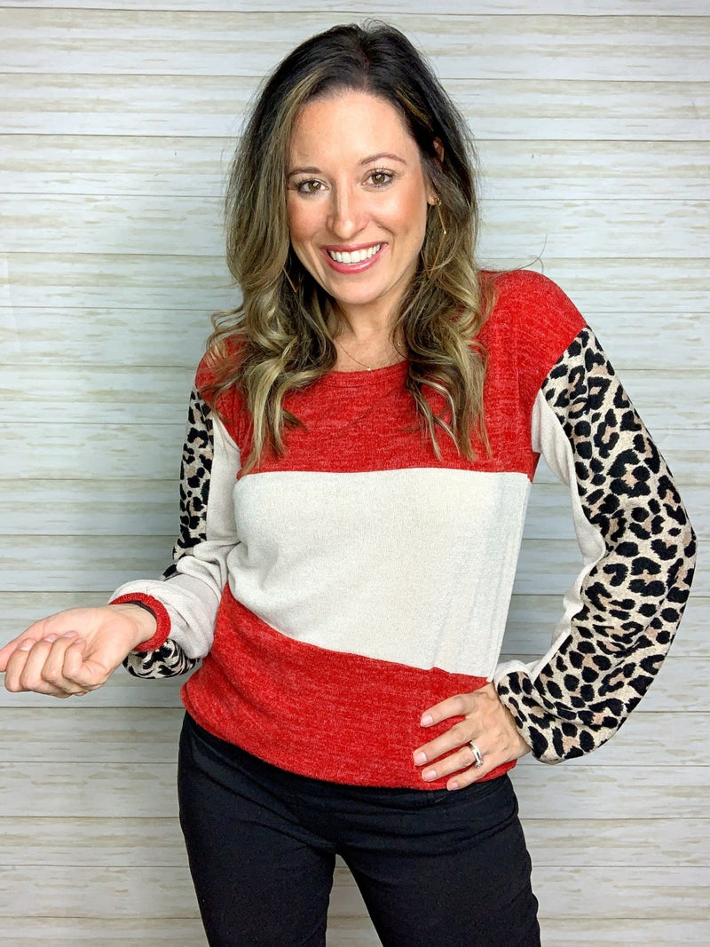 FINAL SALE - Hannah Colorblock Top with Leopard Sleeve Detail