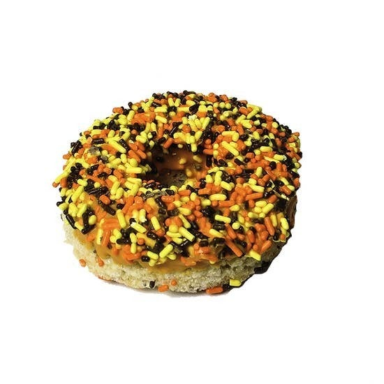 Treat House - Fall Sprinkle Donut