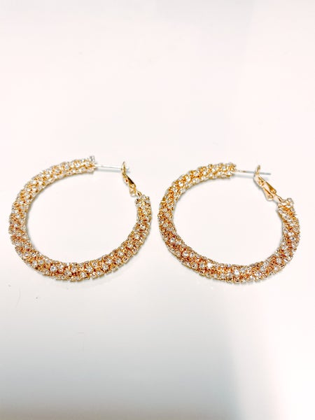 Settle In Chic Earrings