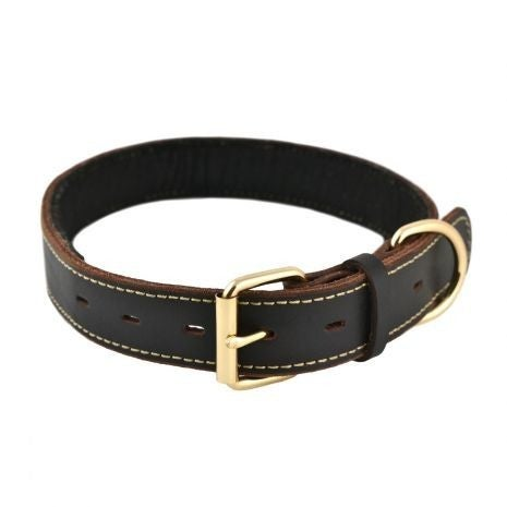 Tall Tails Leather Collar