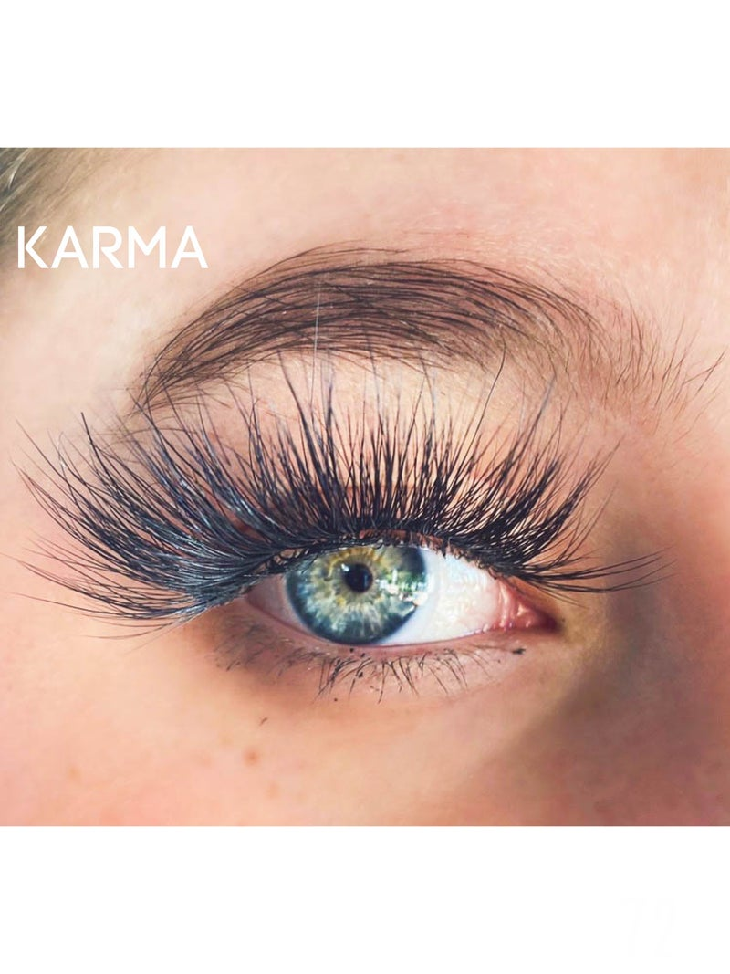 Single Pack Simply Obsessed/Dream House Lashes