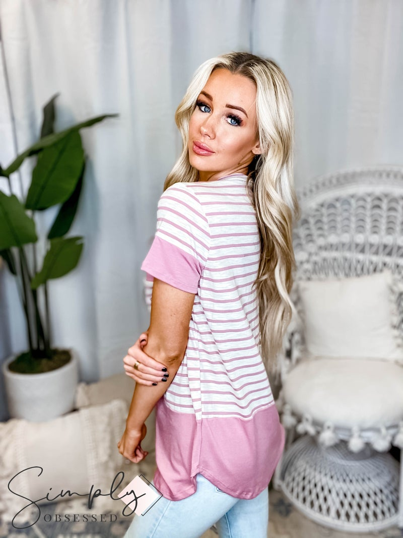 Vanilla Bay - Short sleeve stripe top with solid contrast