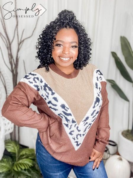 MAIN STRIP-Leopard Color Block Sweater