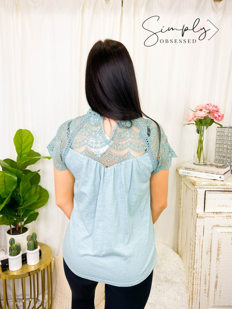 Hailey & Co - Lace trimmed short sleeve knit top