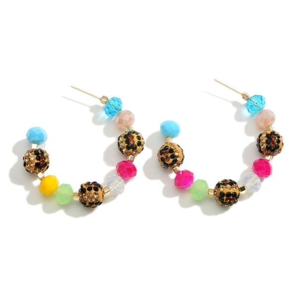 Spiffy And Splendid Earrings
