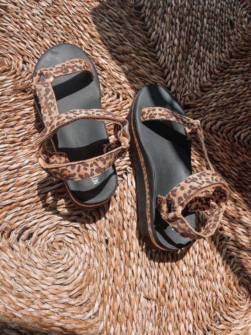Leopard Lover Sandals