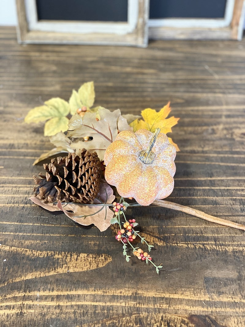 Autumn Variety Pumpkin Pick