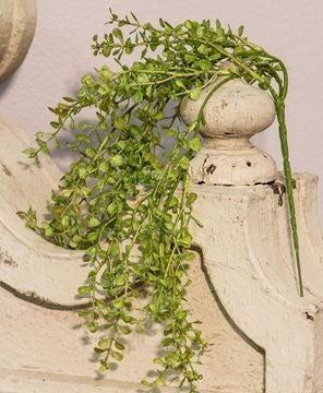 "Hanging Baby Grass Bush - 19"""
