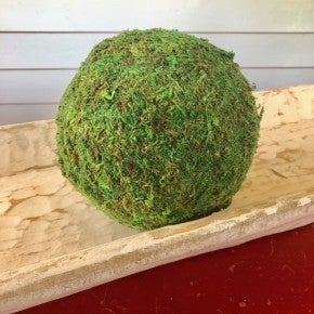 "6"" Large Moss Balls, Set of 3"