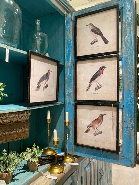 Herrington Hills Birds-Pair