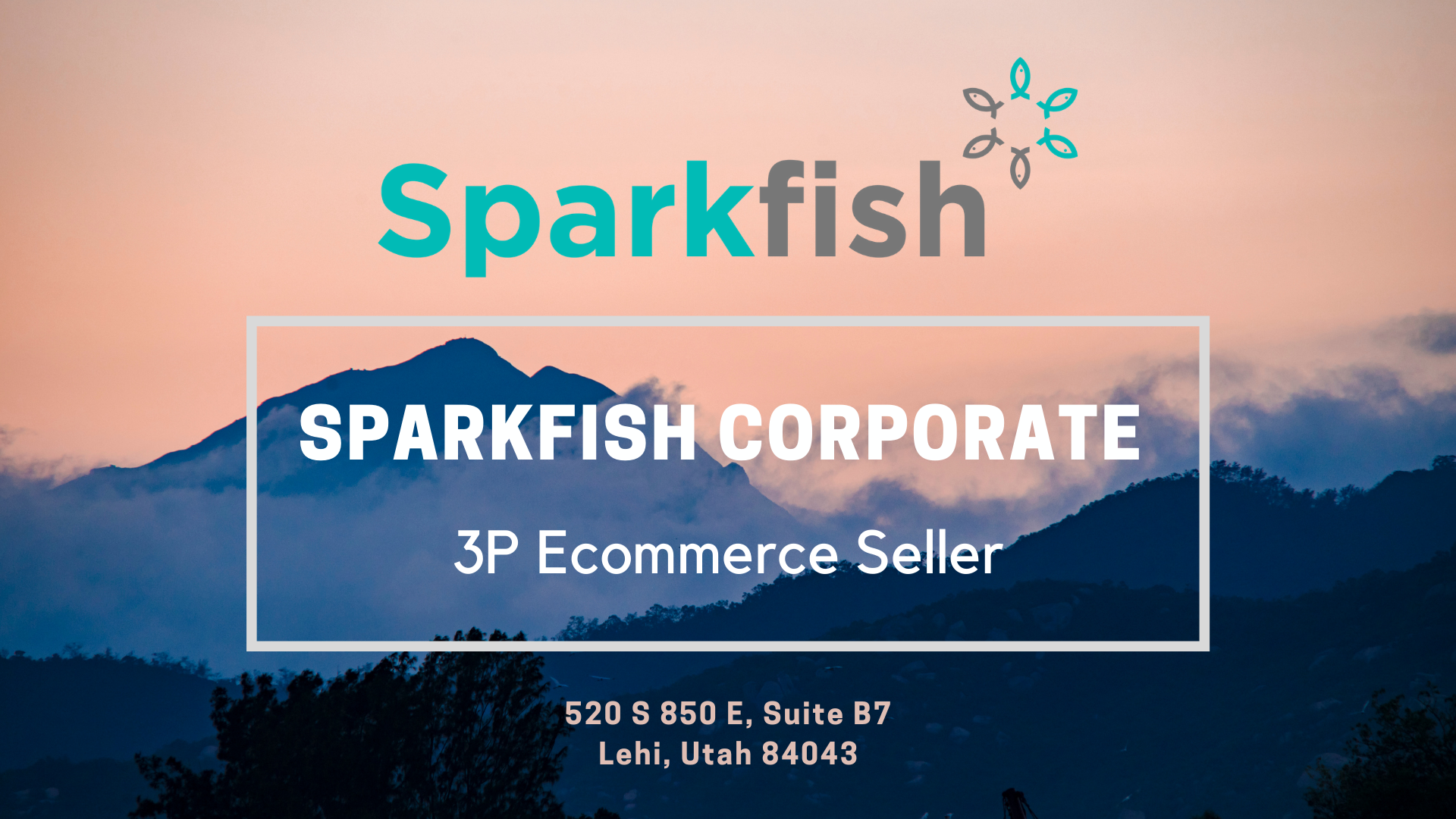 Sparkfish Corporate