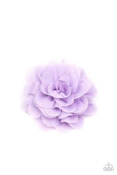 Dahlia Diva- Purple