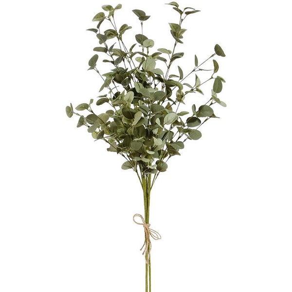 """33"""" Eucalyptus Bundle"""