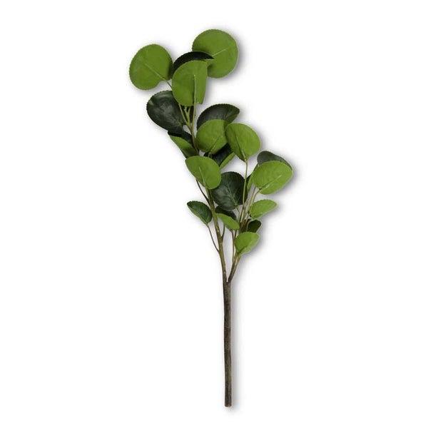 16 Inch 2 Branch Eucalyptus Stem