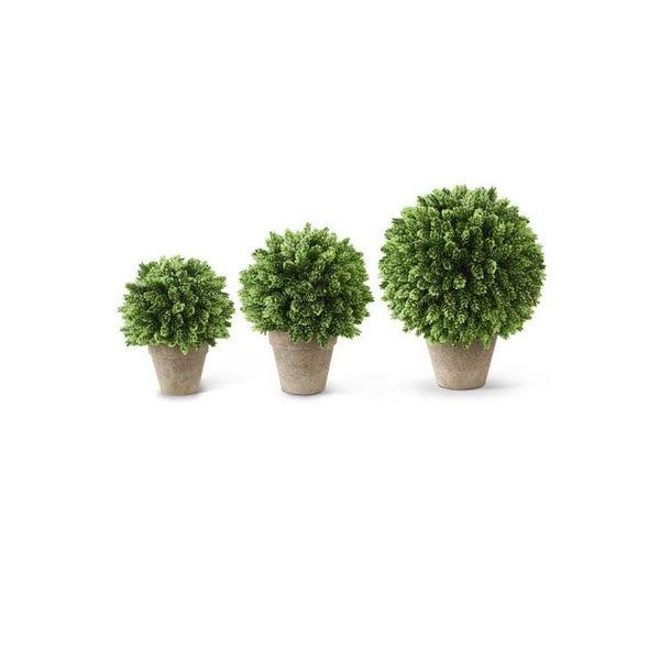 LG. Pineapple Grass Ball in Pot