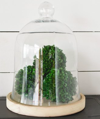 BELL JAR WITH WOOD BASE