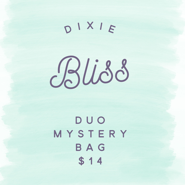 Dixie Bliss Duo Mystery Bag  - FINAL SALE