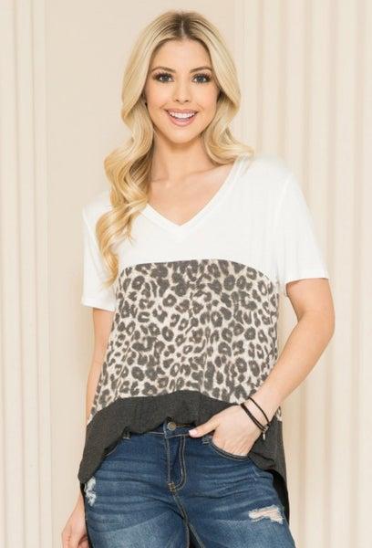PLUS Leopard Charcoal V-Neck Colorblock Top